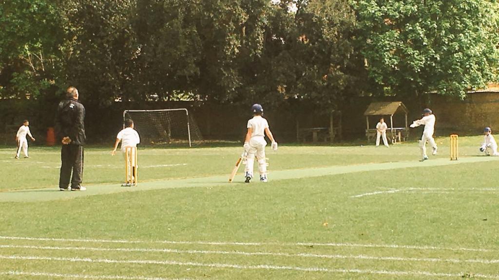 do you like cricket